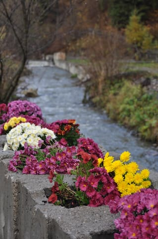 Valea Putnei的民宿