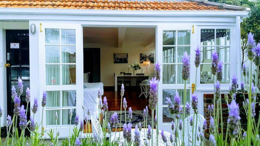 Gorgeous Lavender Apartment Kelburn