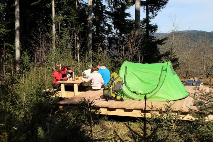 Vorderbühlhof, (Oppenau - Ibach), Trekking Camp am Renchtalsteig