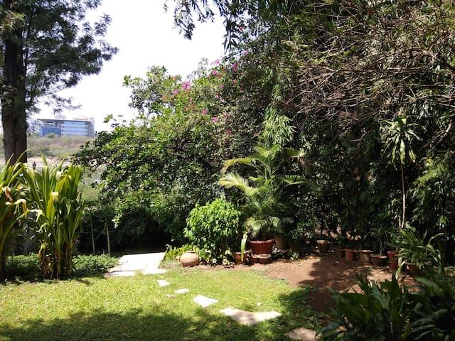 River House, Koregaon Park, S2