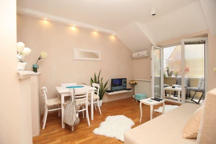 New Apartment Barons Novi Sad for rent