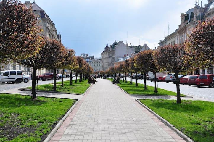 利沃夫的民宿