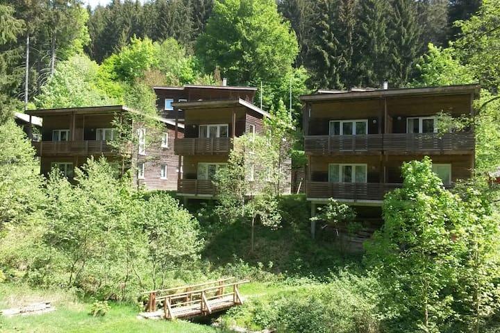 Großbreitenbach的民宿