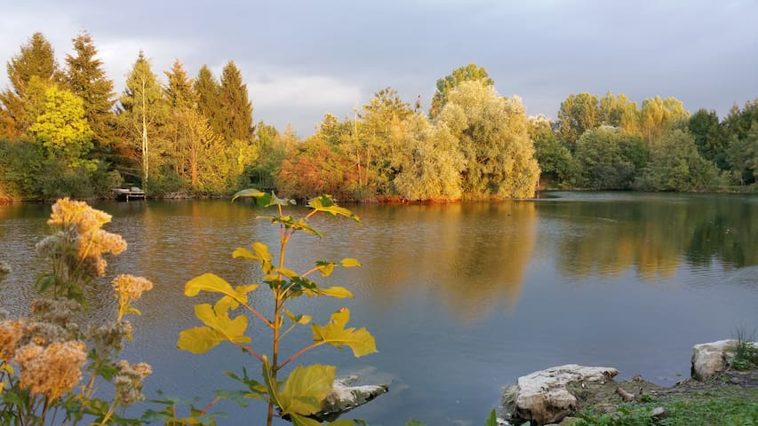 瓦兹河畔欧韦的民宿