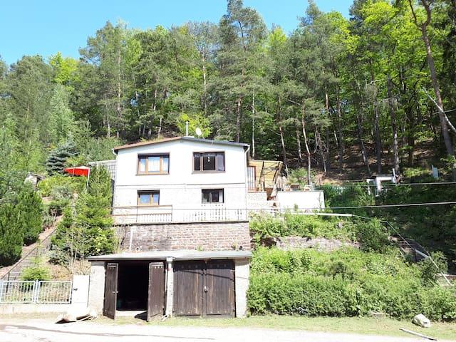 Sud-Harz house: 2/1 roof left part