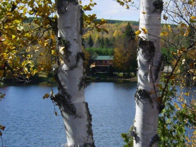 Wilderness Estates Lake Front Camp on Conroy Lake
