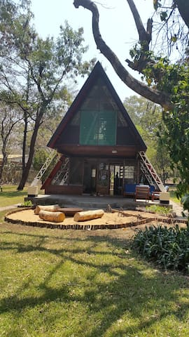 Salima的民宿