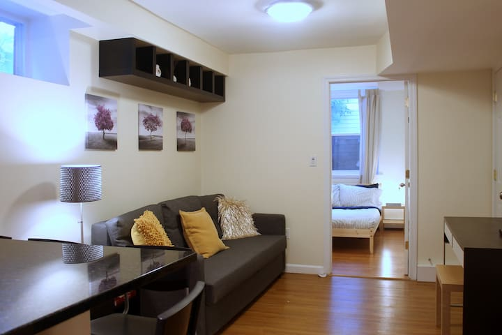 Beautiful Garden Apartment in Coolidge Corner