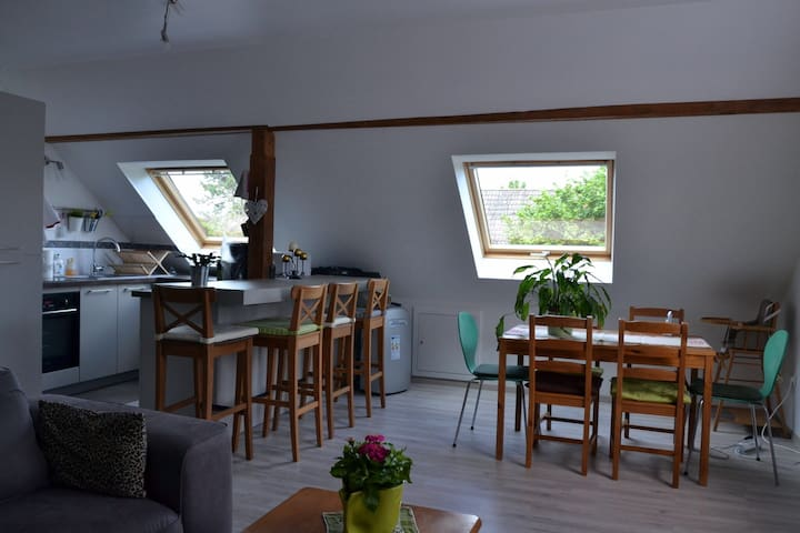 Nice apartment in the heart of Alsace, near Colmar