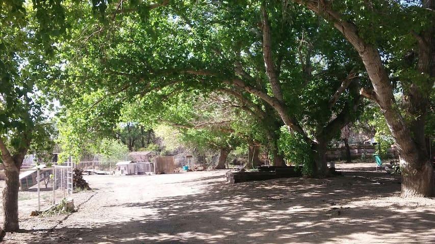 Los Lunas的民宿