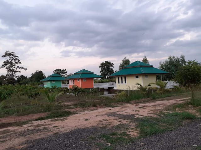 Meesuk Dragon Fruit Farm and Homestay