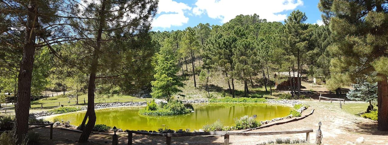 Riópar Albacete的民宿
