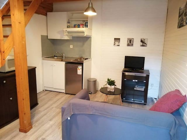 Charming flat in the center of tarbes