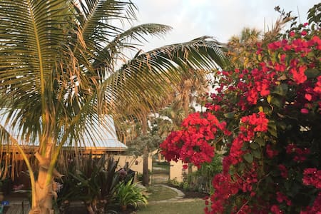 The Cottage in Cocoa Beach Orlando's Closest Beach