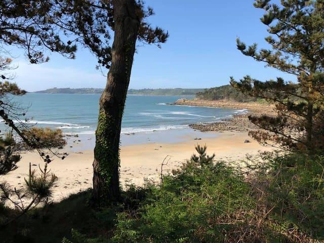 Trédrez-Locquémeau的民宿