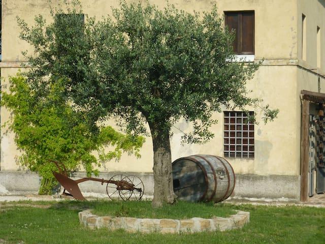 Santa Vittoria in Matenano的民宿