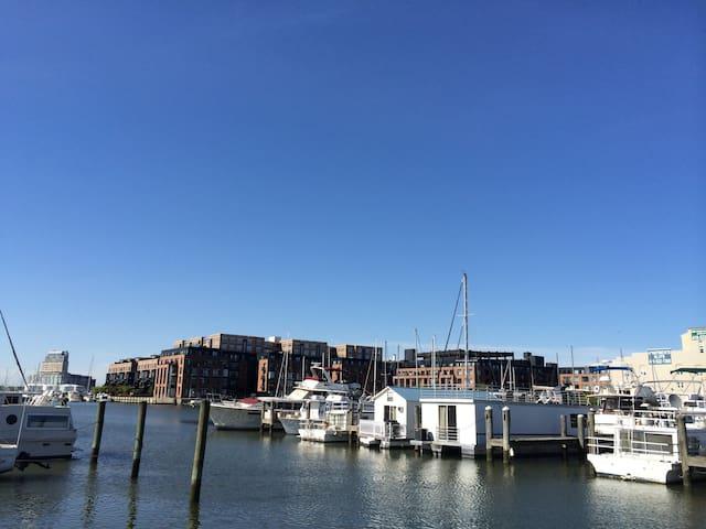 巴尔的摩的民宿