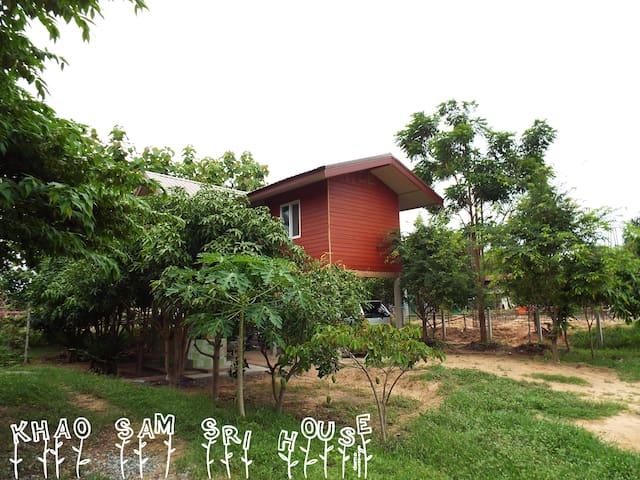 Khao Sam Sri, 2 rooms hidden in the mango trees