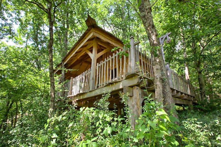 Cabane dans les arbres : Pas de la Louva