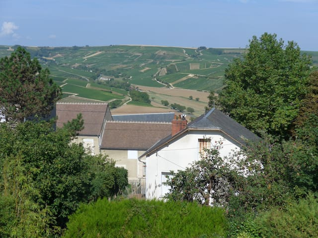 Panoramic view on Sancerre hill