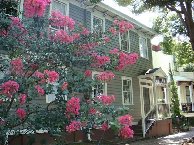 Mimosa House in Historic Savannah