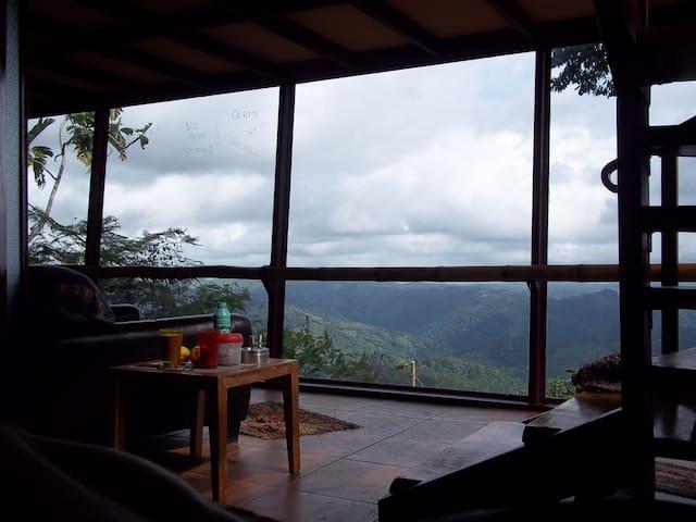 Mercedes Sur de Puriscal Costa Rica的民宿