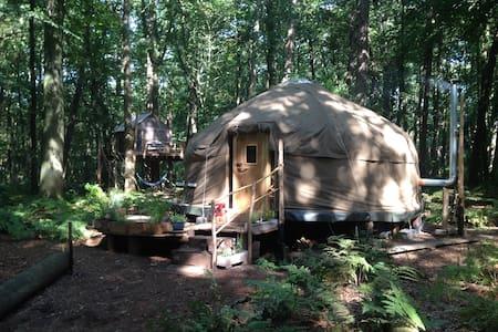 Forest Yurt near Bruges