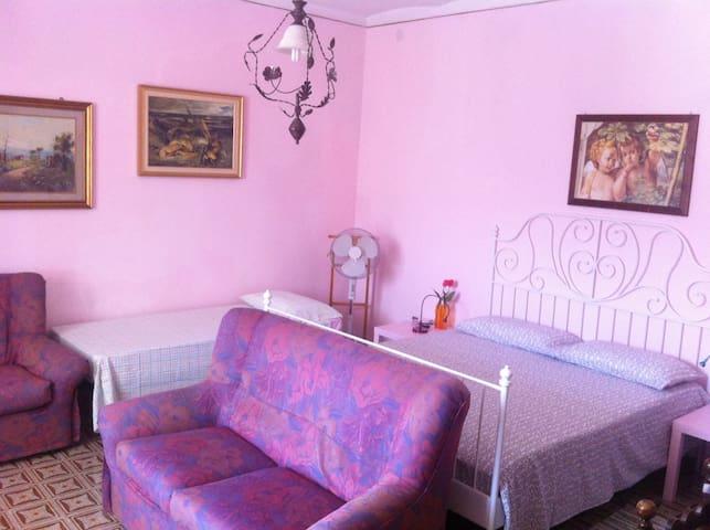 Villa Selciaroli的民宿