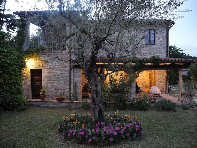 Castelplanio 的民宿