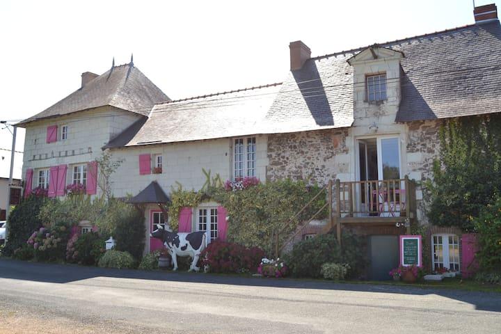 Chalonnes sur Loire 的民宿