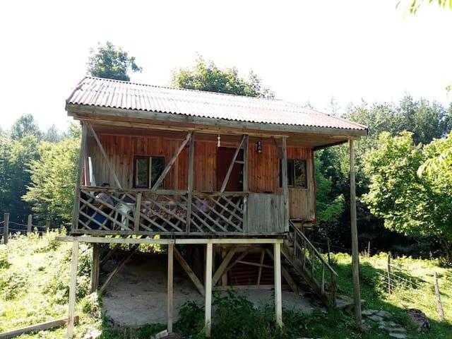 Pelitli的民宿