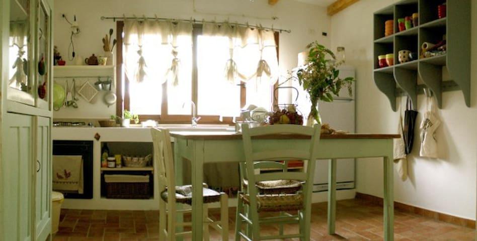 country nest in Ogliastra