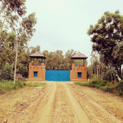 Basi的民宿