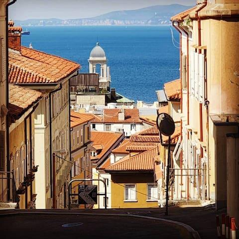 La guida di Trieste