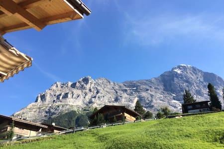 Amazing Eiger views, top/Europe