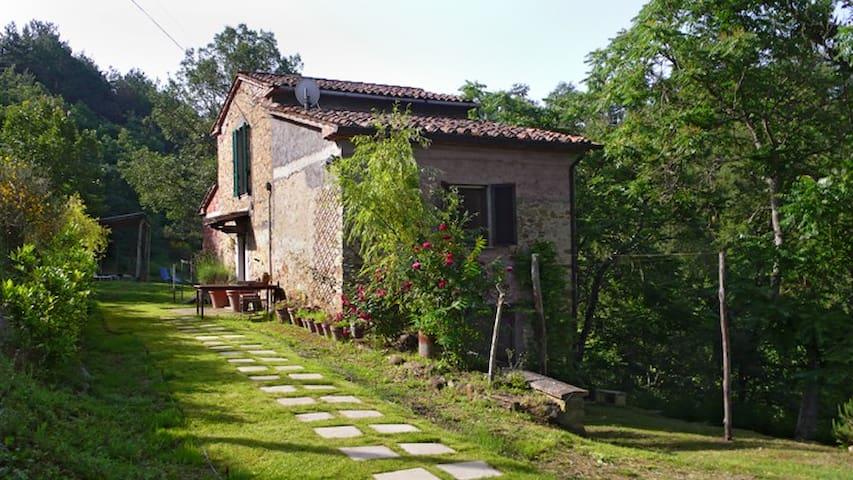 Monte Santa Maria Tiberina的民宿