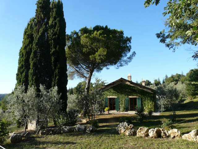 """Il pino"" – Gorgeous country villa with pool"