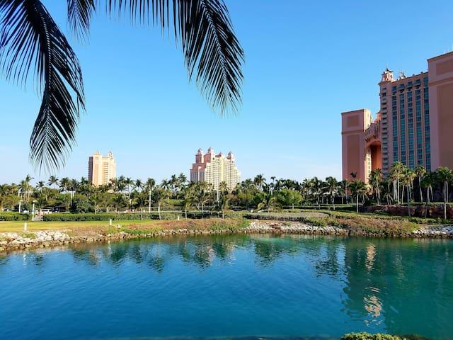 Paradise Island的民宿