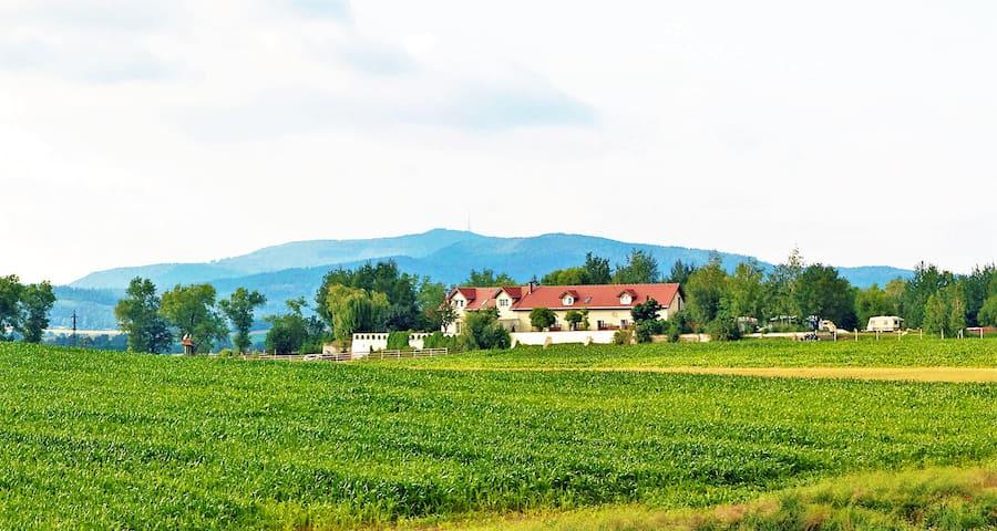 Uciechów的民宿