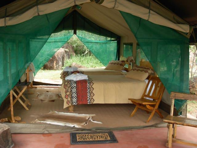 Turnstream Reserve - Jewel of Africa