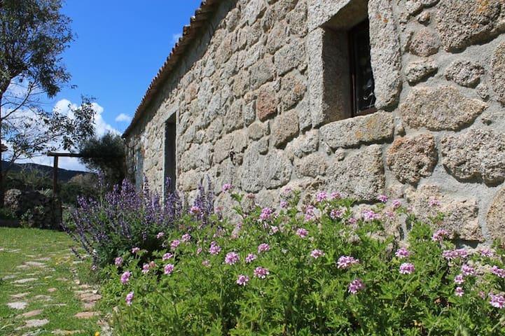 Luogosanto的民宿