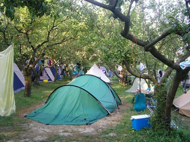 mini  organic camping near Venice