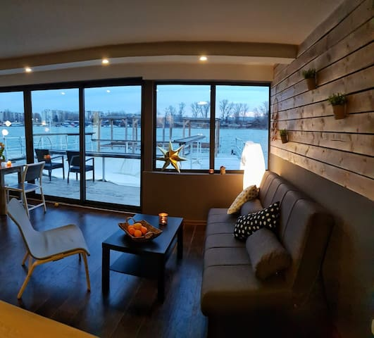 Houseboat  on the river Sava with pool..