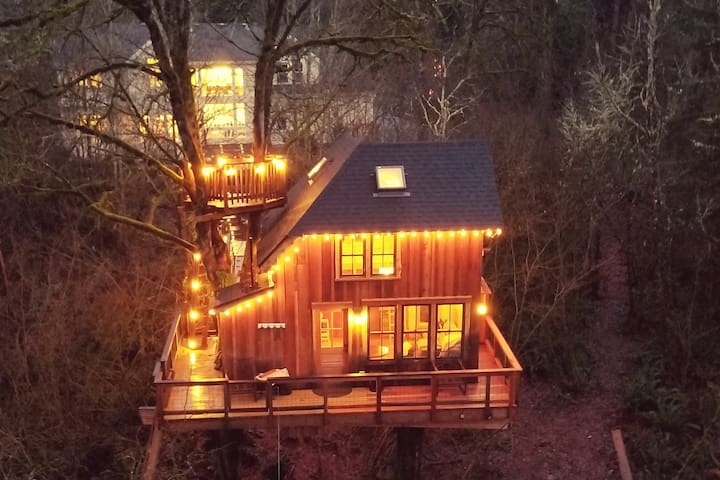 Yes, Open! - Pete Nelson 2017 Original Treehouse