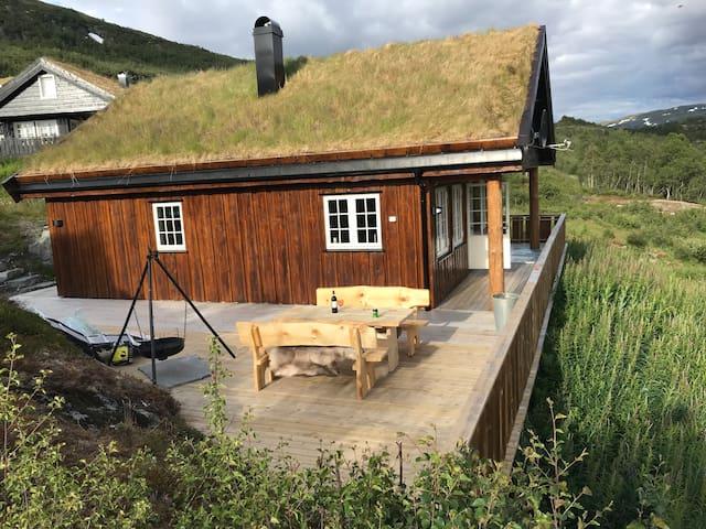 Hytte ved Hardangervidda
