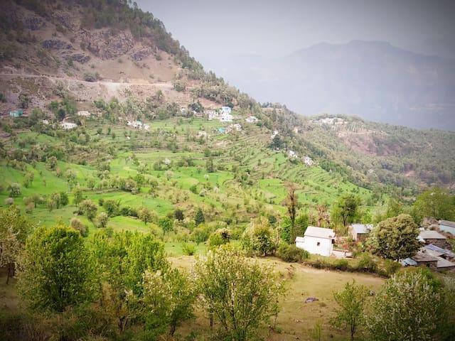 Bhurmuni的民宿