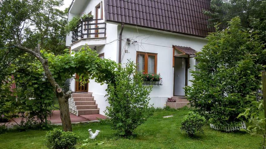 Pecinișca的民宿