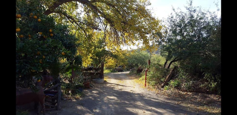 C. Steele Aravaipa Canyon Casita