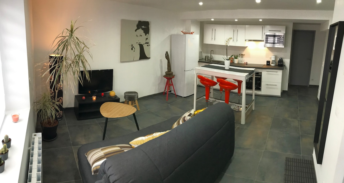 Appartement neuf agréable & moderne/2pces/50m2/RDC