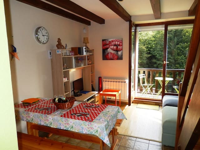 Visit Alsace from center position / condo 4 people